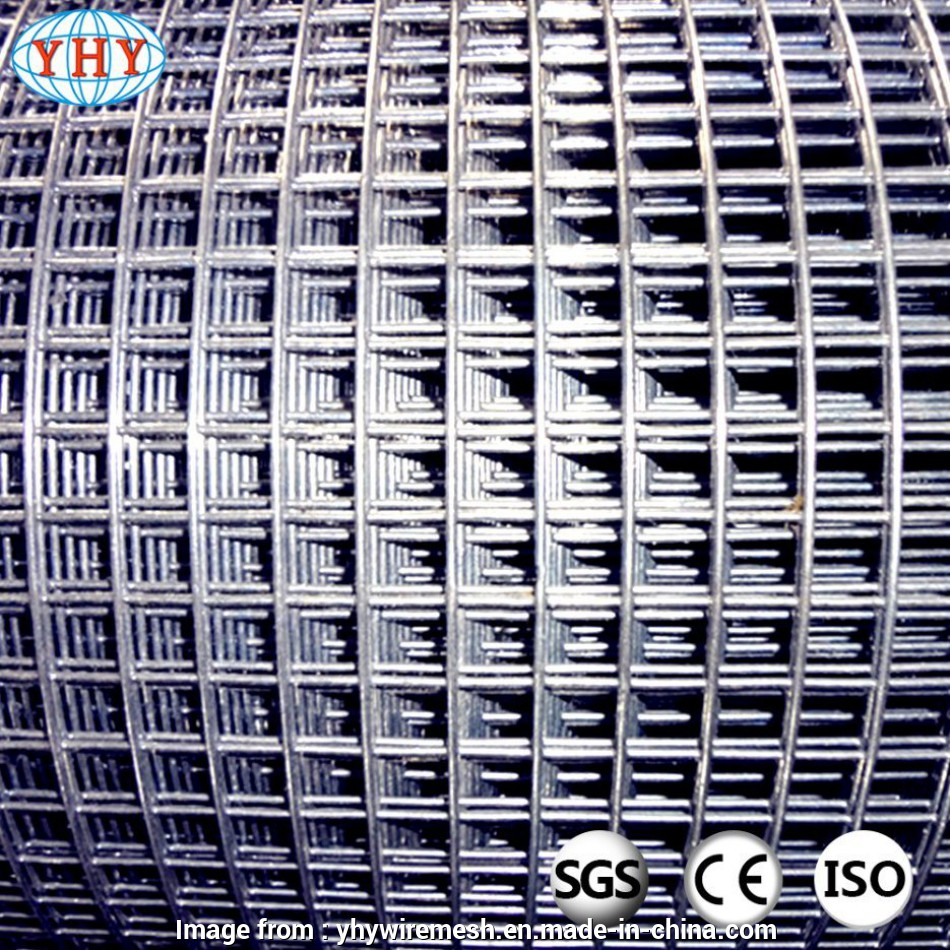 1 2 inch square wire mesh China, Inch Square Hole Galvanized Welded Wire Mesh Photos 16 Cleaver 1 2 Inch Square Wire Mesh Solutions