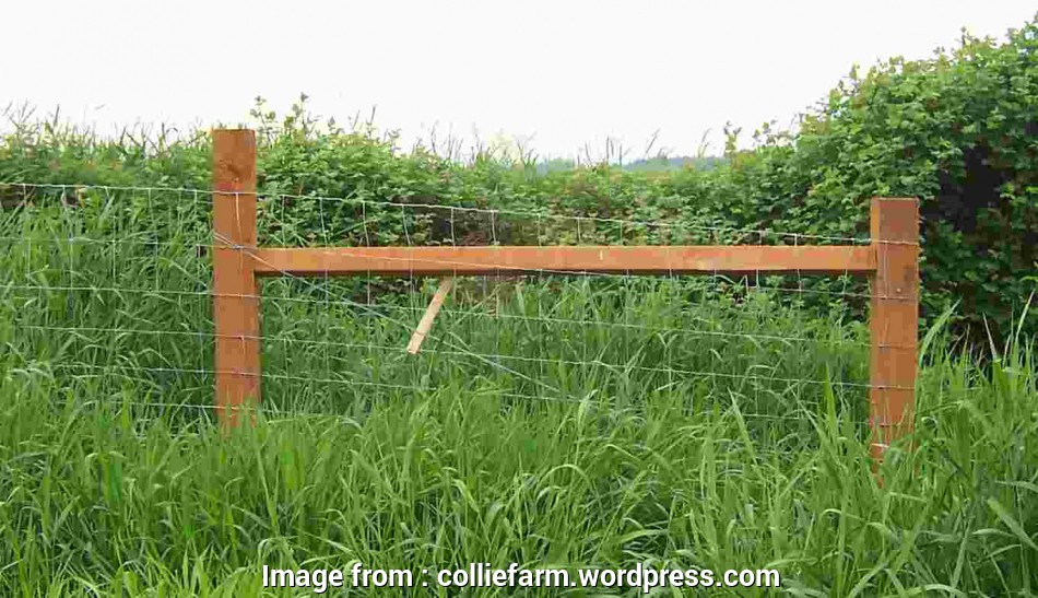 12 gauge woven wire fence The Case, the H-Brace,, Collie Farm Blog 13 Creative 12 Gauge Woven Wire Fence Collections