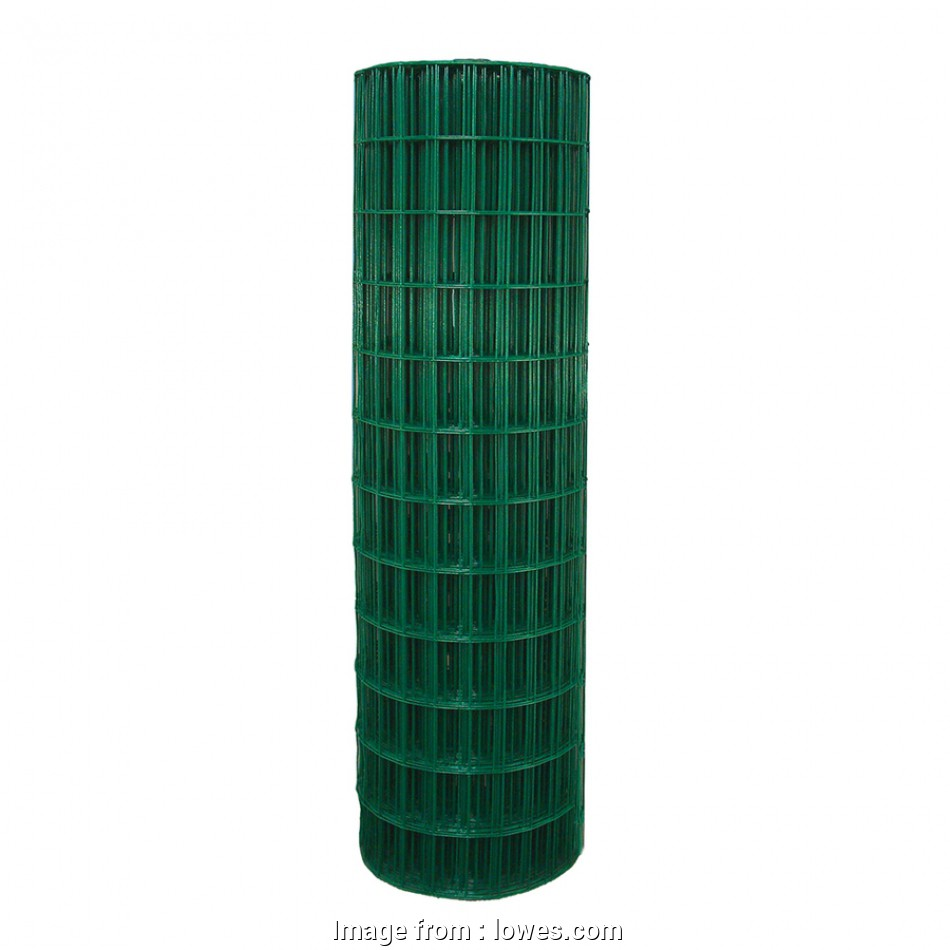 14 gauge fence wire lowes Shop Garden Zone (Actual: 100-ft x 4-ft), coated welded wire 18 Practical 14 Gauge Fence Wire Lowes Images