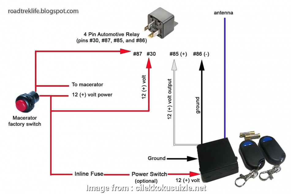 2  12 Volt Switch Wiring Perfect Luxury Rv Battery