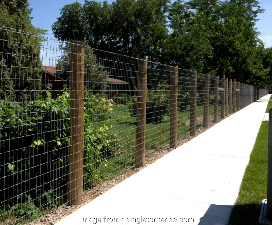 6 foot wire mesh fence Singleton Fence : NoClimbFence 9 Cleaver 6 Foot Wire Mesh Fence Collections