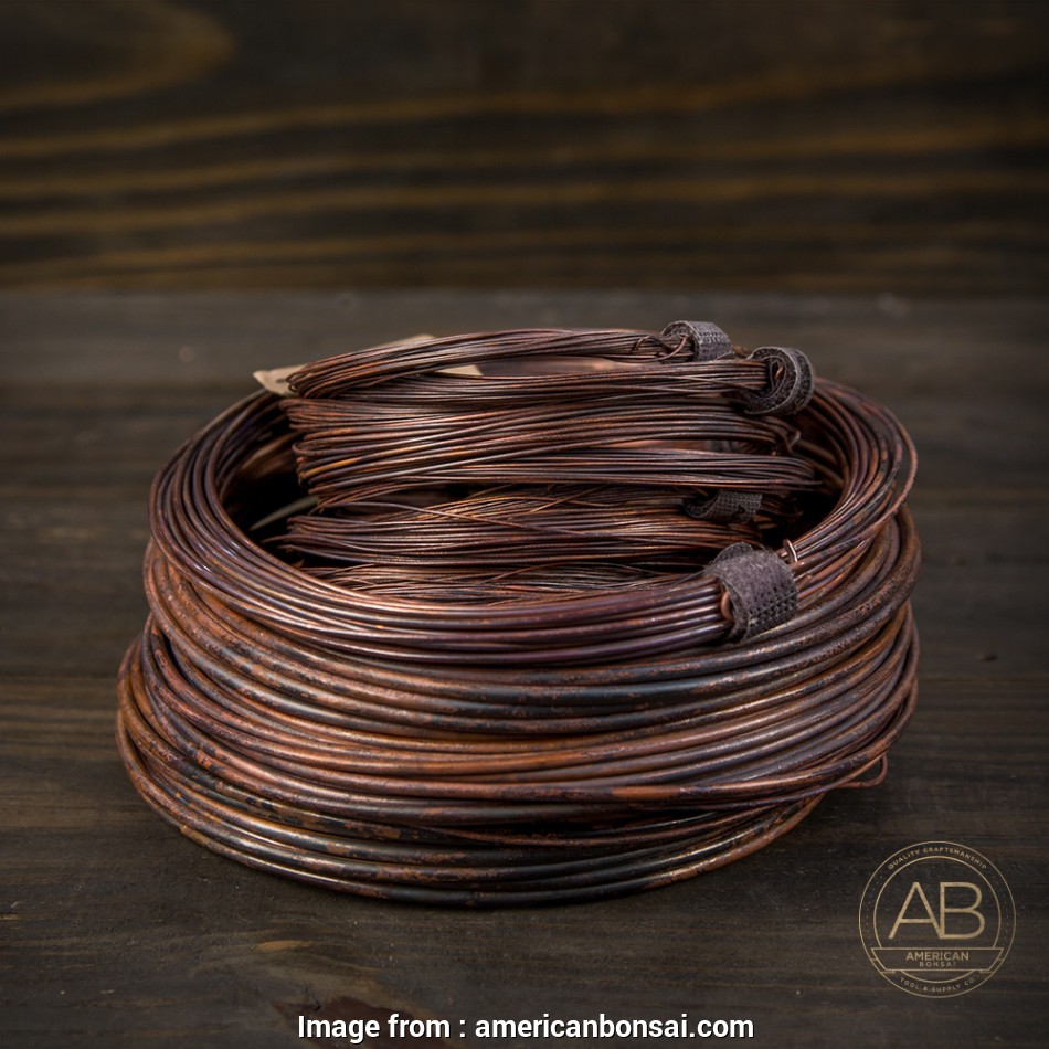 6 awg wire diameter mm American Bonsai #6, (4.12mm) Annealed Copper Bonsai Training Wire, 25 ft 12 Creative 6, Wire Diameter Mm Pictures