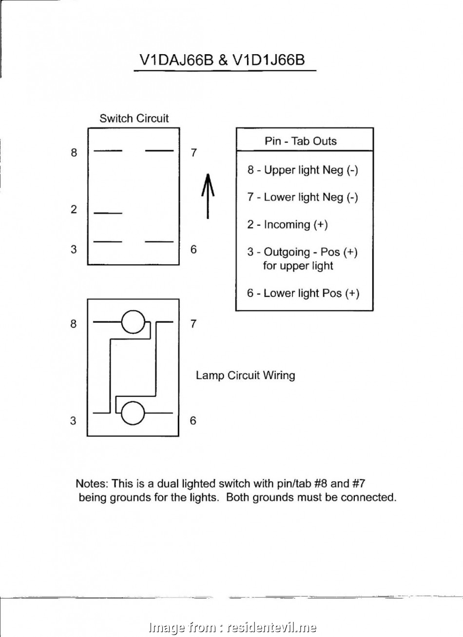 DIAGRAM] Carling Spdt Toggle Switch Wiring Diagram FULL Version HD Quality Wiring  Diagram - MALIKSAUTOCARE.ROBERTOSHOP.ITmaliksautocare.robertoshop.it