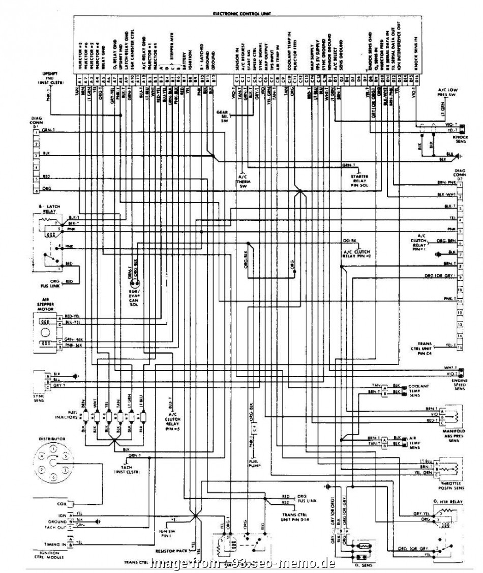 Cat Wiring Diagram from tonetastic.info