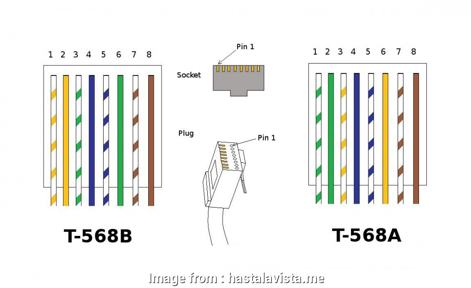 Cat 5e Vs  6 Wiring Diagram Simple Cat 6 Wiring Diagram At  T Cat5e Wall Jack With Rj45 568b