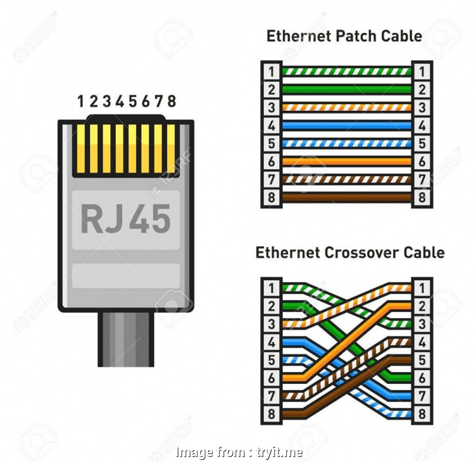 Cat6 Connector Wiring Diagram Creative How To Wire A Cat6