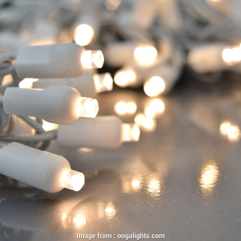 christmas fairy lights white wire Warm White Party Light Reel, White Wire -, Lights 12 Practical Christmas Fairy Lights White Wire Images