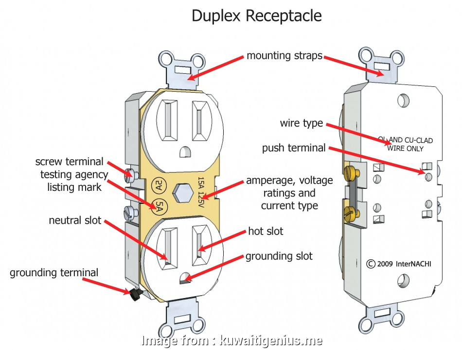 House Outlet Wiring Diagram from tonetastic.info