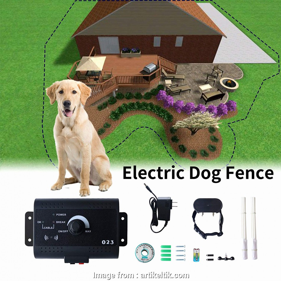 electric dog fence wired Electronic, Fencing System, Notice Francais Beau Electric, Fence Wired Containment System Radio Wireless Fences Electric, Fence Wired Fantastic Electronic, Fencing System, Notice Francais Beau Electric, Fence Wired Containment System Radio Wireless Fences Collections