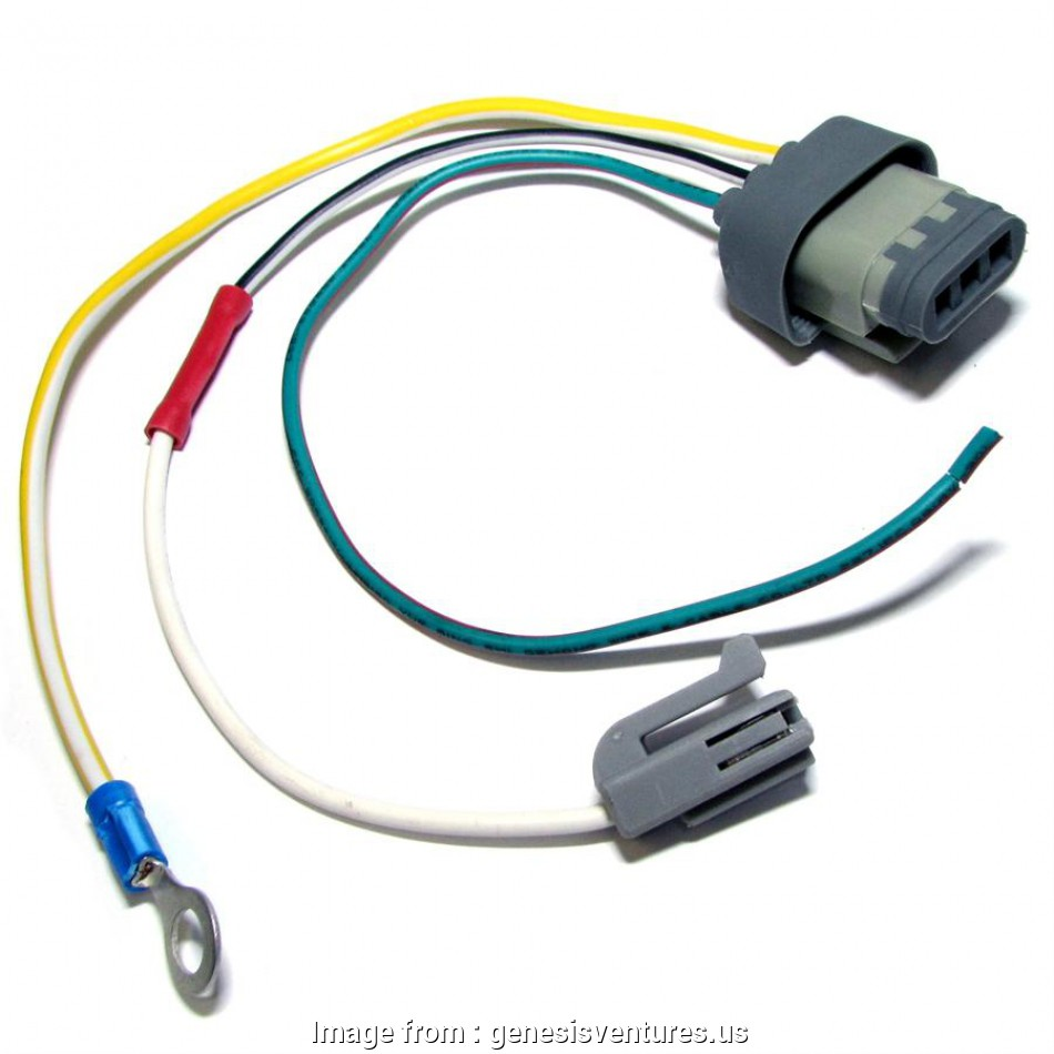 Electrical Outlet Wiring Pigtail Practical Part 925606