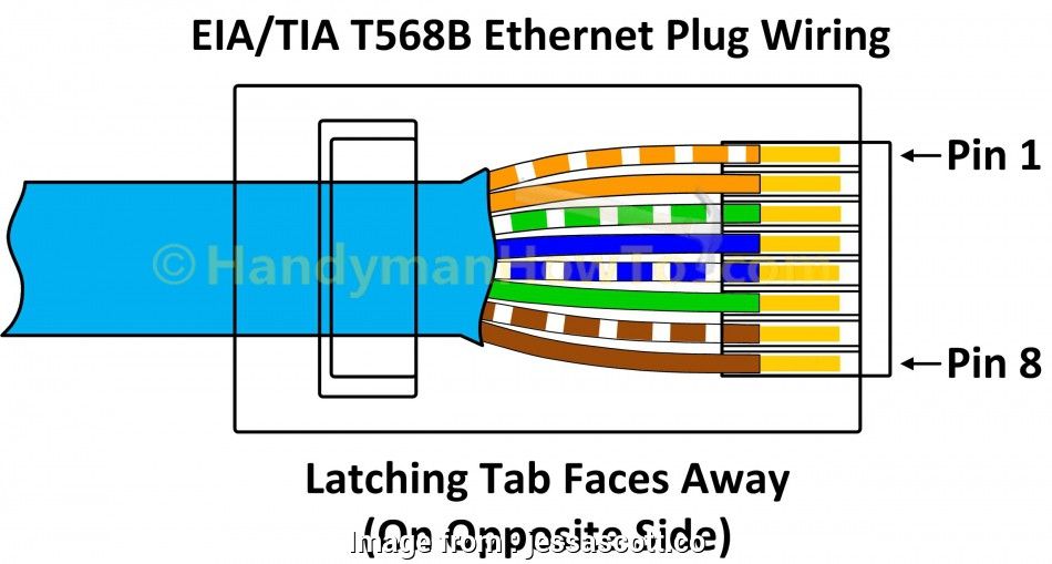 14 Most Ethernet Twisted Pair Wiring Diagram Photos