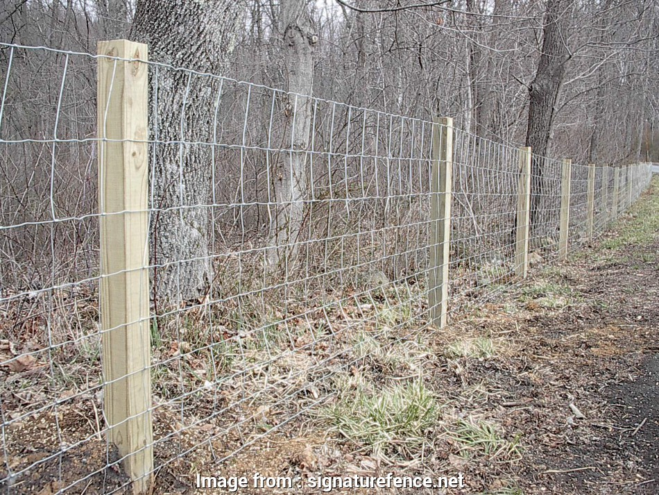 farm fence wire mesh 4' farm fence 13 Fantastic Farm Fence Wire Mesh Galleries