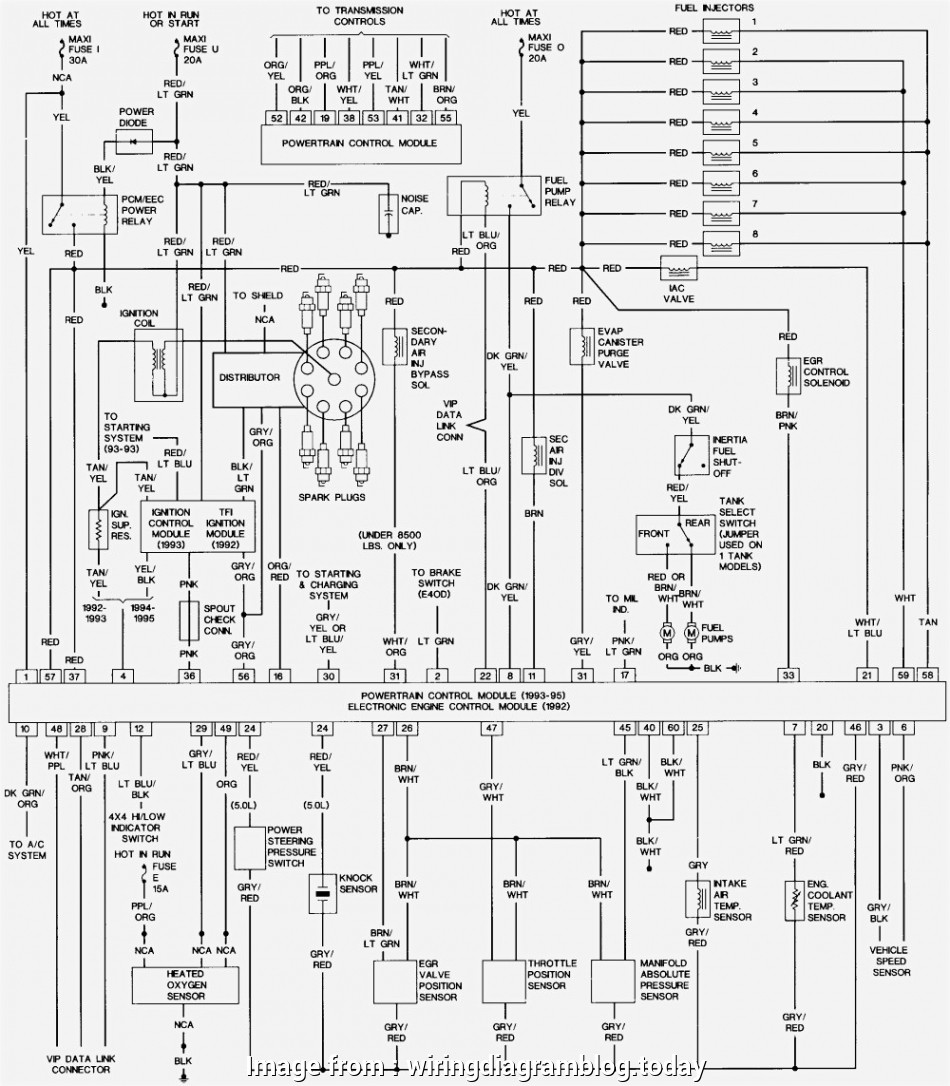 Ford F150 Starter Wiring Diagram from tonetastic.info