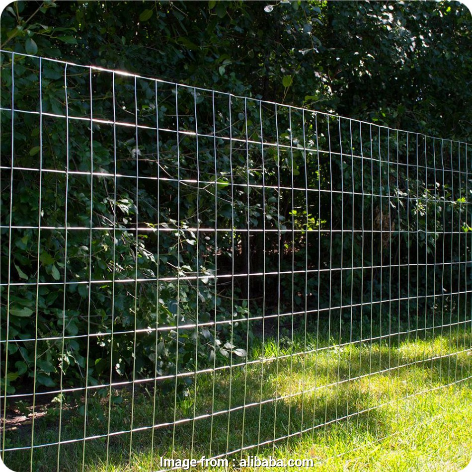 green wire mesh fence Green Vinyl Coated Welded Wire Mesh Fence, Green Vinyl Coated Welded Wire Mesh Fence Suppliers, Manufacturers at Alibaba.com 16 Cleaver Green Wire Mesh Fence Collections