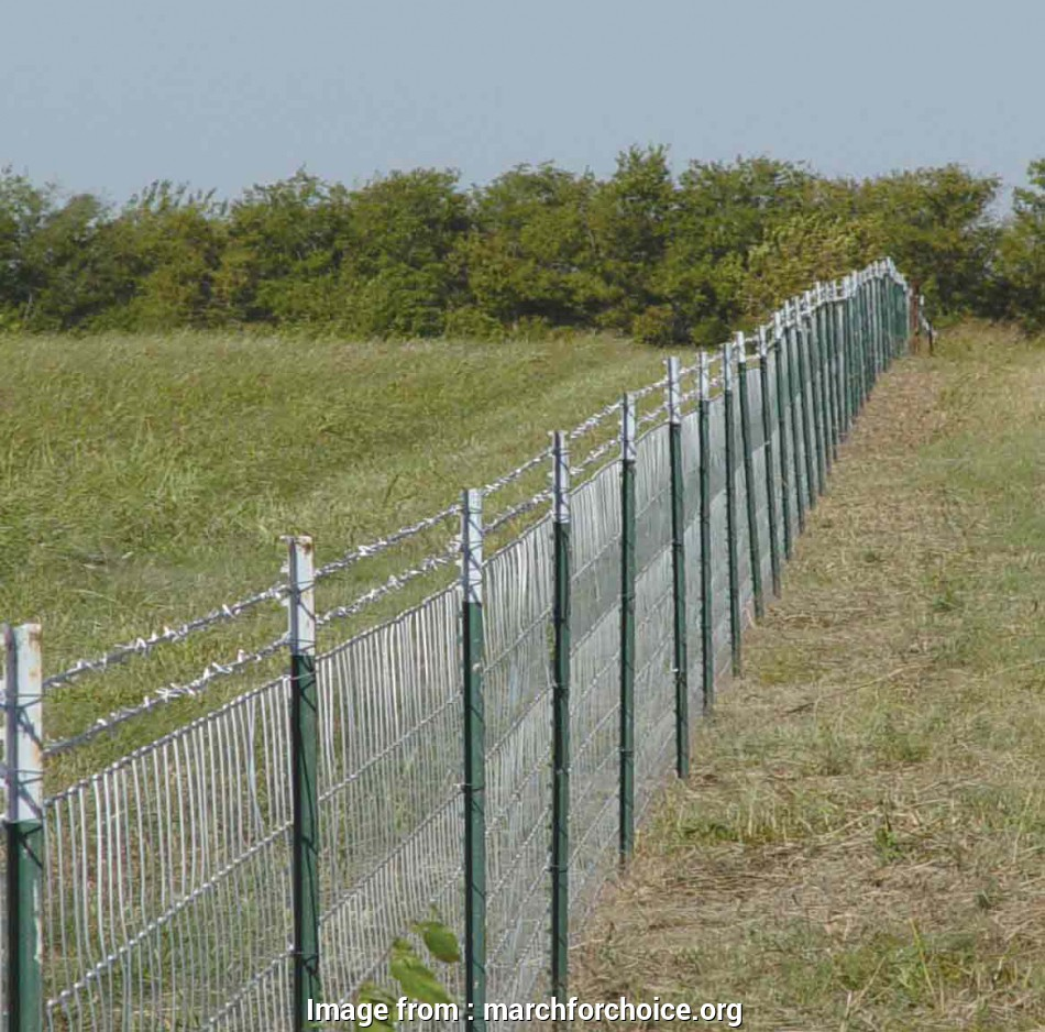 high tensile woven wire mesh Smart High Tensile Fence : Fence, Gate Ideas, Best High 11 Top High Tensile Woven Wire Mesh Ideas