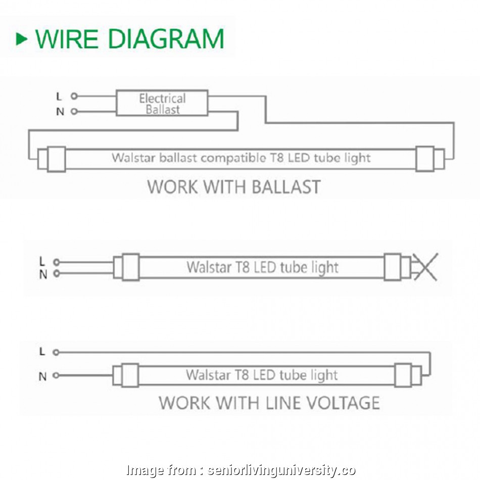 How To Wire A Fluorescent Light, Led New T8, Lamps Ballast 2