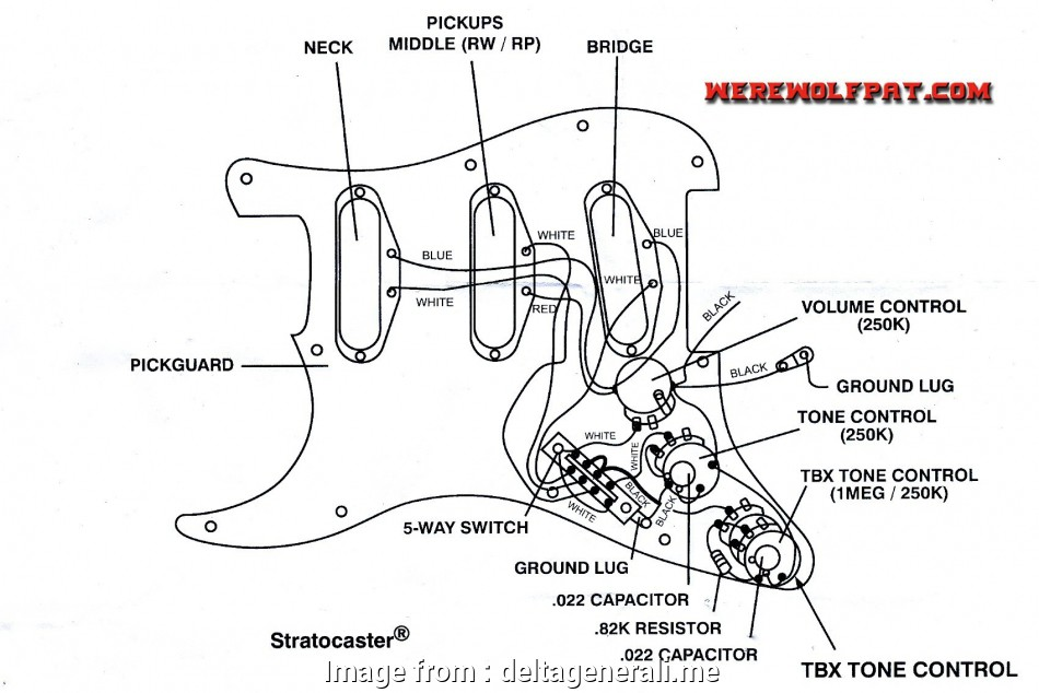How To Wire A Rotary Switch Top Wiring Diagram Rotary Switch Best Of Fender Strat Diagrams