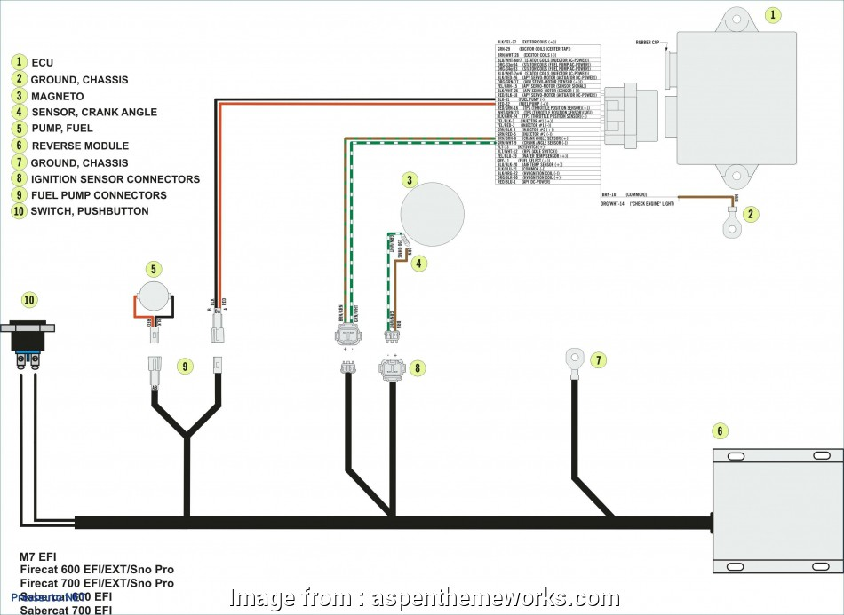 How To Wire  Way Momentary Switch Best     Wiring Diagram
