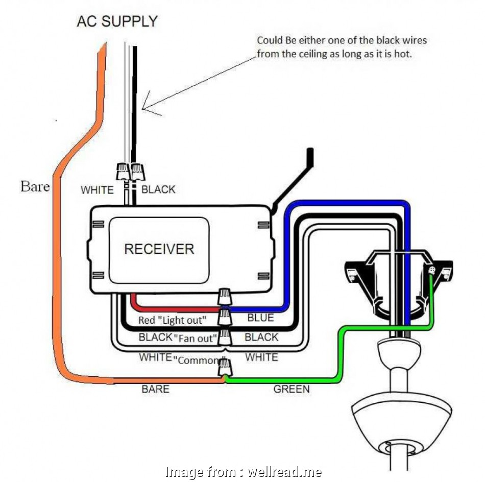 Hunter Ceiling  Wiring Diagram Blue Wire Simple Ceiling  Idea Of Wiring Diagram Harbor Breeze