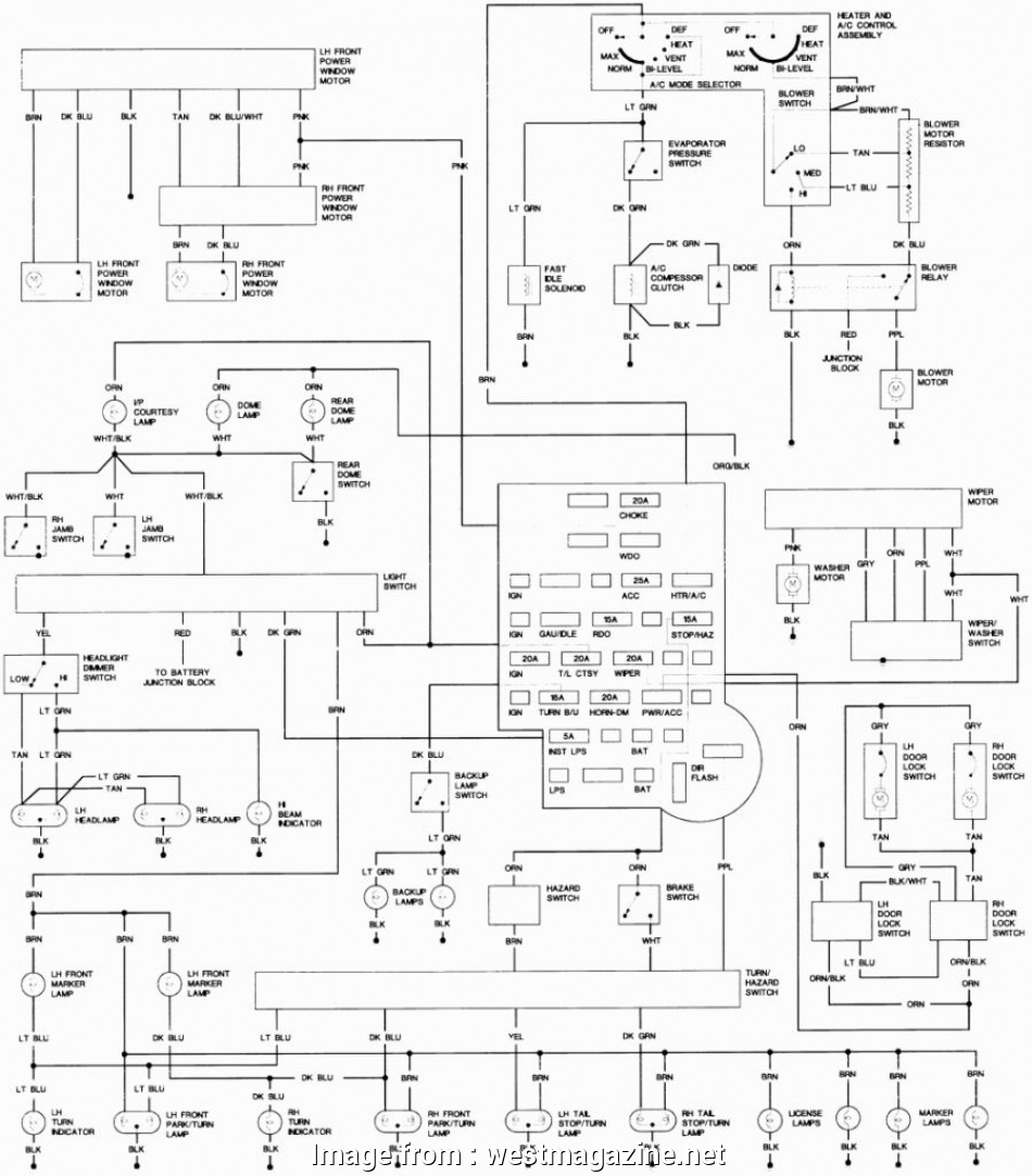 Isuzu  Electrical Wiring Diagram Cleaver Impressive Design