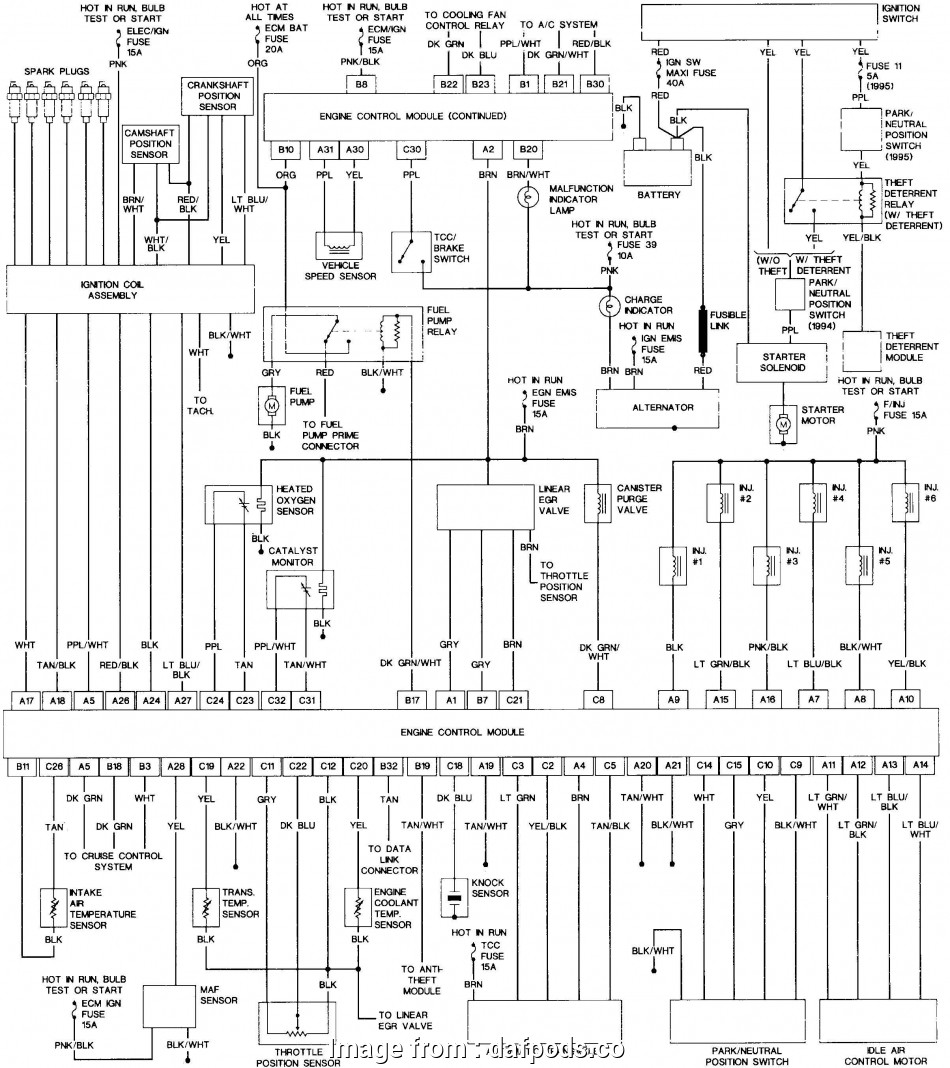 Jeep  Starter Wiring Diagram Creative 1999 Jeep Grand
