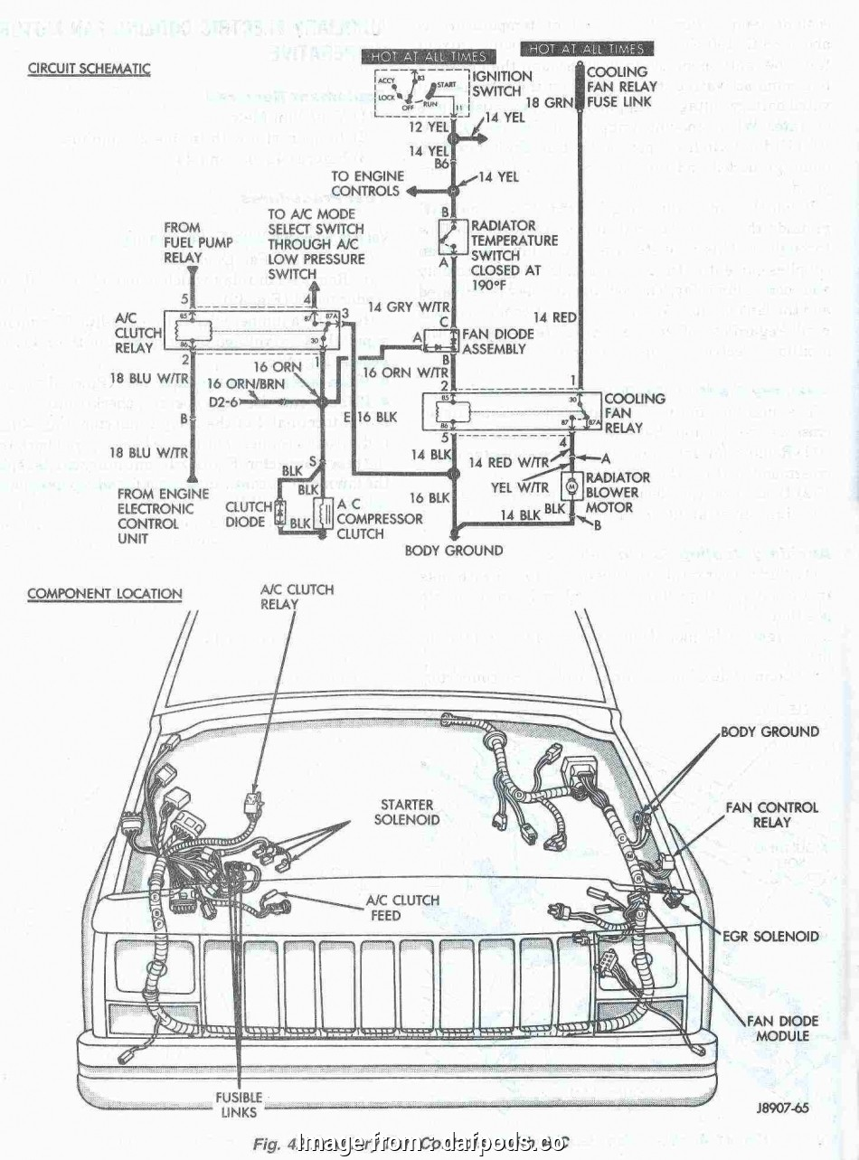 Jeep  Starter Wiring Diagram Cleaver Jeep Grand Cherokee