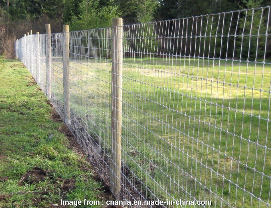 knotted wire mesh fence China Knotted Wire Mesh Fence, Field Fence, China Knotted Wire Mesh, Field Wire Fence 15 New Knotted Wire Mesh Fence Pictures
