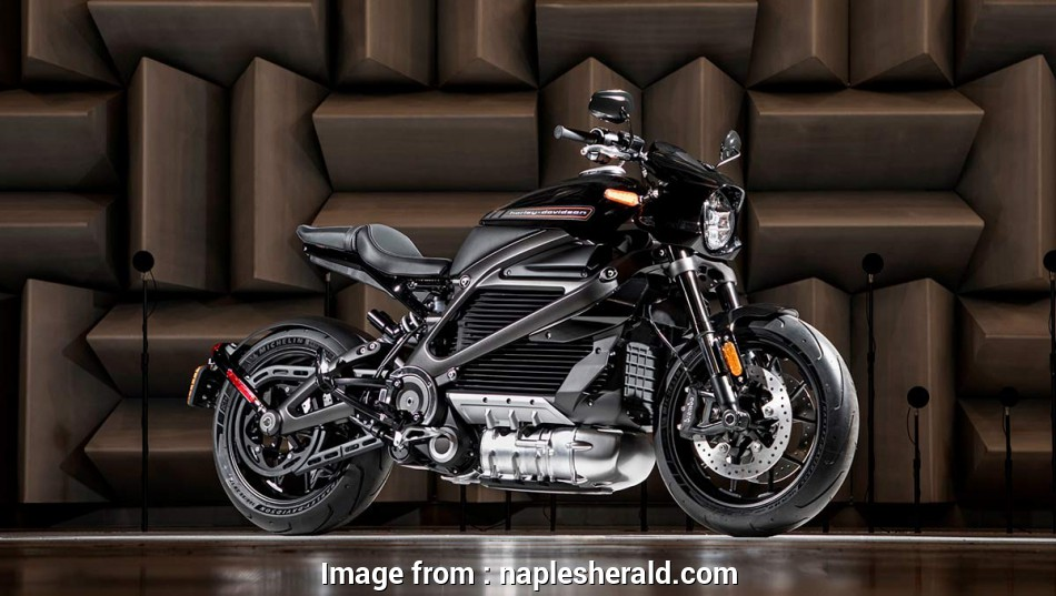 live wire electric naples fl Harley-Davidson rebels with an electric motorcycle, Naples Herald 9 Perfect Live Wire Electric Naples Fl Collections