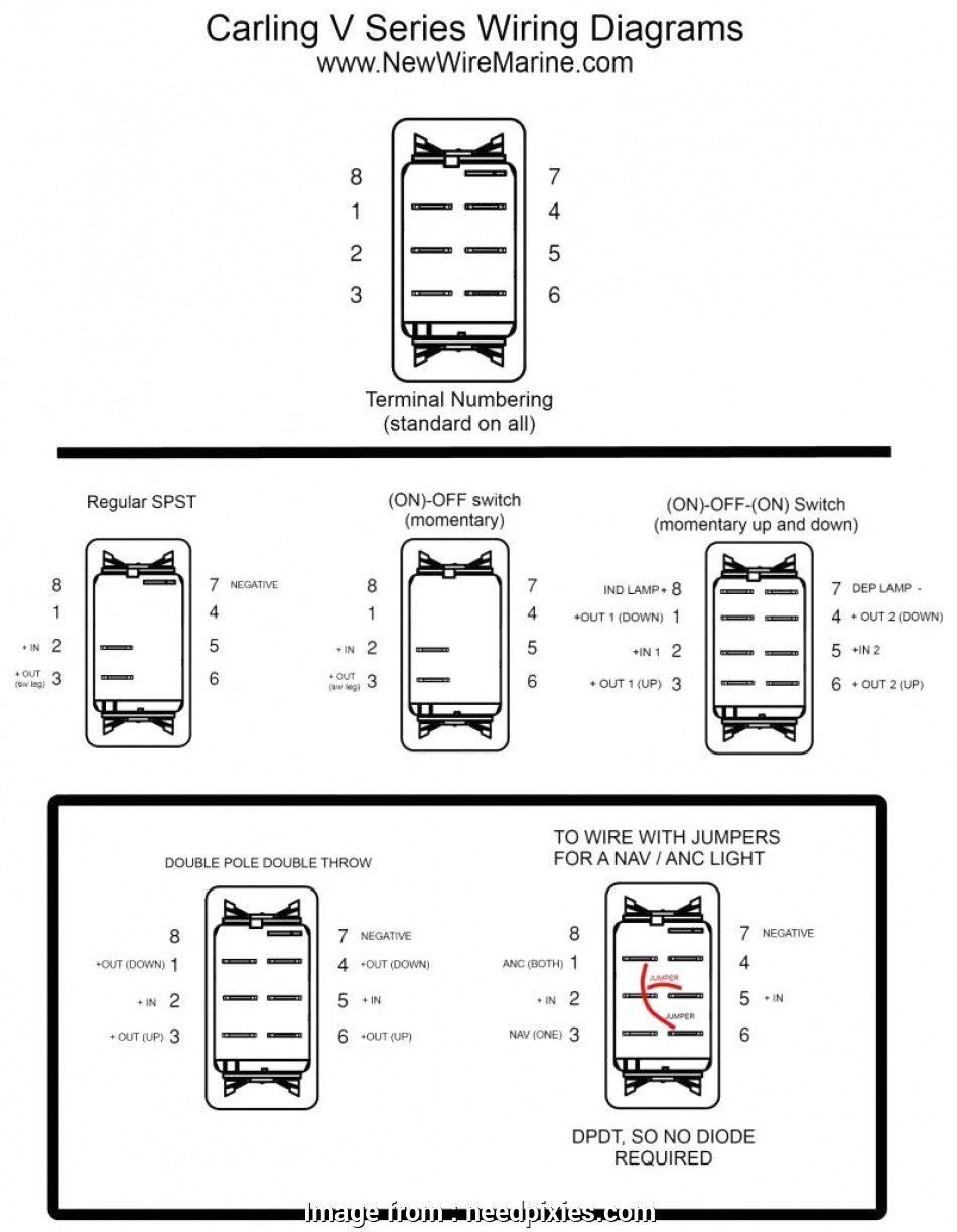 marine raider illuminated toggle switch wiring diagram
