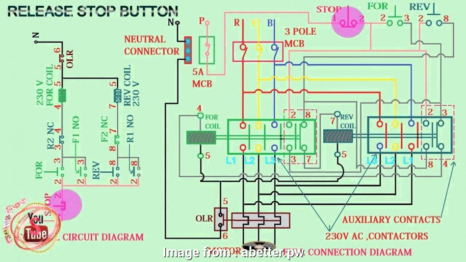 Motor Starter Wiring Diagram Pdf Best Magnetic Contactor