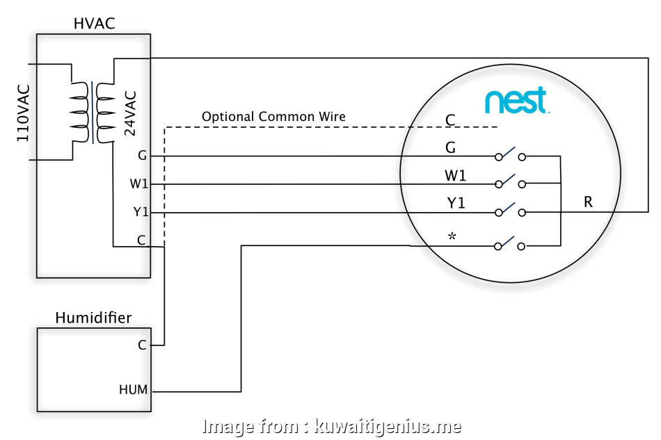 Nest Heat Link Wiring Diagram Uk Cleaver Inspirational Nest ... Nest Thermostat Wiring Wire Diagram on three wire thermostat diagram, cat 6 pinout diagram, 4 wire thermostat diagram, honeywell thermostat installation diagram, home thermostat diagram, ac thermostat diagram, 5 wire thermostat wire, car thermostat diagram, white rodgers thermostat wire diagram, 5 wire heat pump thermostat diagram, 7 wire thermostat diagram, 5 wire fan motor diagram, 5 wire thermostat hook up, heat and air thermostat diagram, 5 wire thermostat wiring color code, 5 wire honeywell thermostat, hvac thermostat diagram,