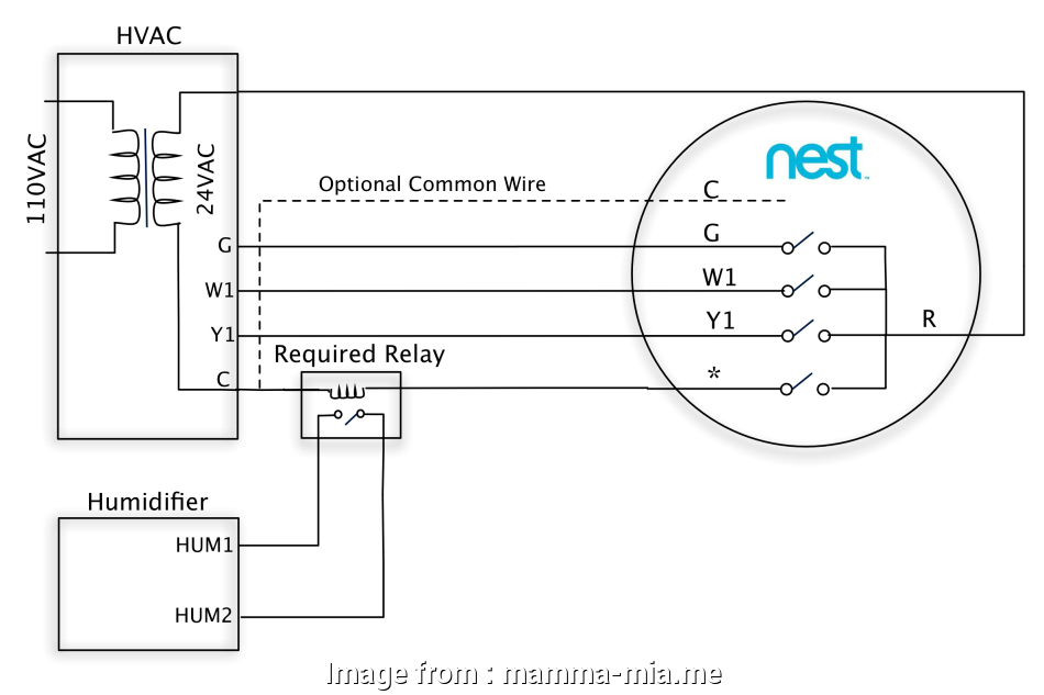 Nest Humidifier Wiring Diagram Creative Nest Learning