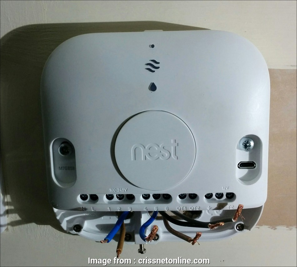 Magnificent Nest Thermostat 3 Wiring Diagram Popular Wiring Diagram Nest Wiring 101 Relewellnesstrialsorg