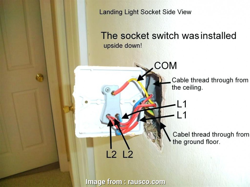 nz light switch wiring diagram Wiring A, Way Light Switch Nz, Wiring Solutions Nz Light Switch Wiring Diagram Cleaver Wiring A, Way Light Switch Nz, Wiring Solutions Photos