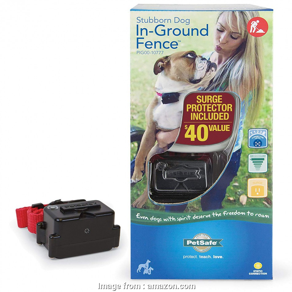 petsafe stubborn dog electric fence without wire Amazon.com : Petsafe Stubborn, Fence, 2-dog system PIG00-10777 : Wireless, Fence Products :, Supplies 13 Top Petsafe Stubborn, Electric Fence Without Wire Pictures