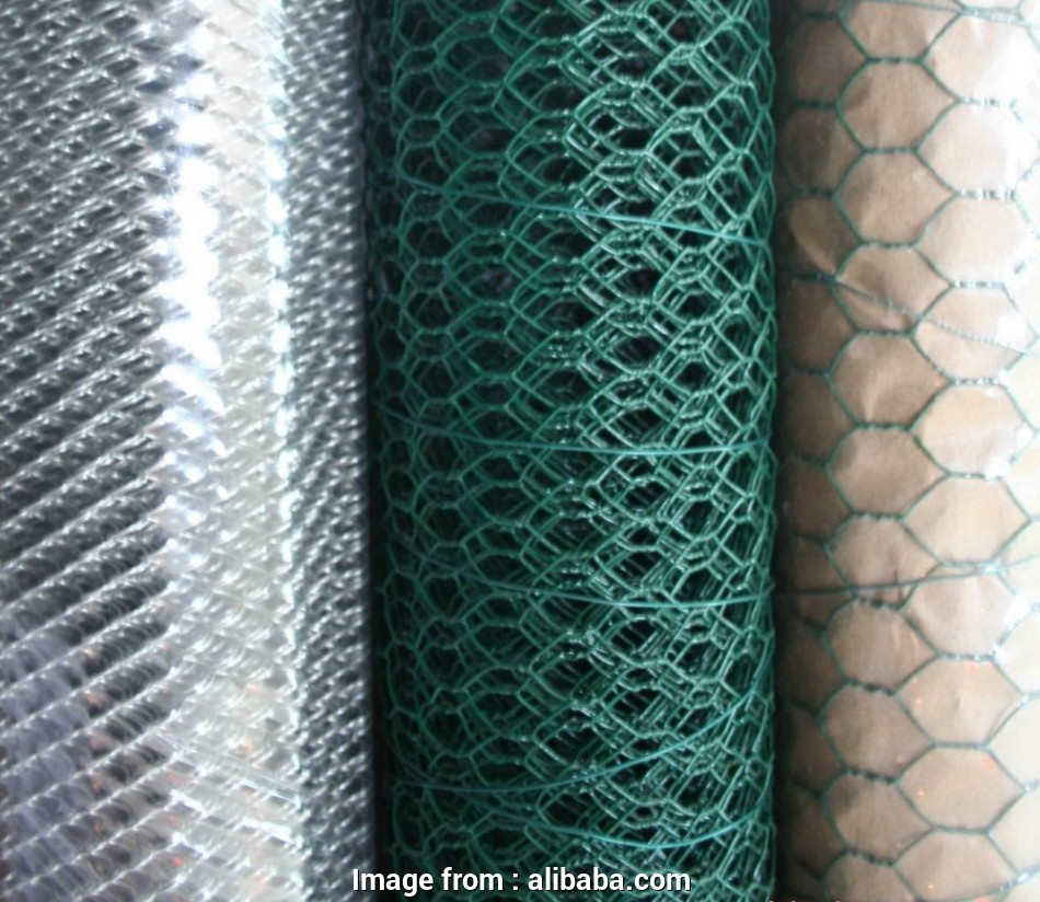 pvc coated galvanized wire mesh 1/2 Inch, Coated Galvanized Hexagonal Wire Mesh,Chicken Wire Mesh Specifications,Anping Hexagonal Mesh -, 1/2 Inch, Coated Chicken Wire,Pvc 12 Cleaver Pvc Coated Galvanized Wire Mesh Galleries