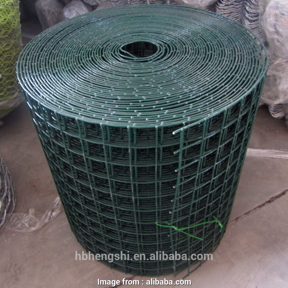 pvc coated wire mesh for cages Pvc Coated Wire/welded Rabbit Cage Wire Mesh/heavy Gauge Welded Wire Mesh -, Pvc Coated Wire,Welded Rabbit Cage Wire Mesh,Heavy Gauge Welded Wire Mesh 16 Most Pvc Coated Wire Mesh, Cages Galleries