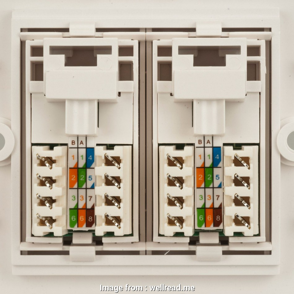 Rj45 Socket Wiring Diagram Practical How To Wire An Ethernet Wall Socket Tech Advisor Throughout