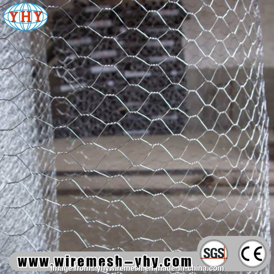 stainless steel hex wire mesh China Hexagonal Wire Mesh Fexible Used, Lobster Trap, China Mesh, Metal Mesh Stainless Steel, Wire Mesh Best China Hexagonal Wire Mesh Fexible Used, Lobster Trap, China Mesh, Metal Mesh Solutions