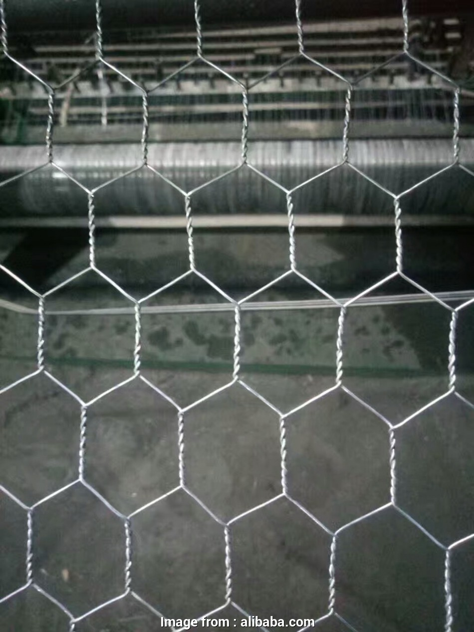 stainless steel wire mesh kenya Chicken Wire Mesh Kenya Cheap Netting With, Price -, Hexagonal Wire Netting,High Quality Chicken Wire Mesh Kenya,Cheap Chicken Netting Product 9 Nice Stainless Steel Wire Mesh Kenya Pictures