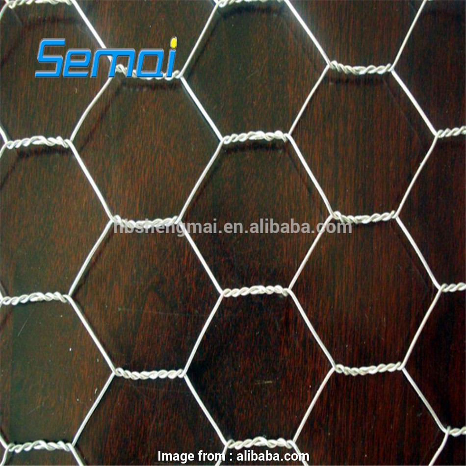 stainless steel hex wire mesh Lobster Trap Hexagonal Wire Mesh, Lobster Trap Hexagonal Wire Mesh Suppliers, Manufacturers at Alibaba.com Stainless Steel, Wire Mesh New Lobster Trap Hexagonal Wire Mesh, Lobster Trap Hexagonal Wire Mesh Suppliers, Manufacturers At Alibaba.Com Pictures