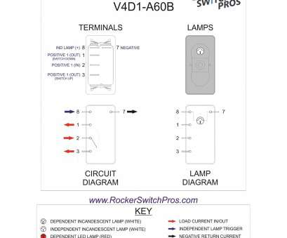 12v toggle switch wiring 12v Lighted Toggle Switch Wiring Diagram Lukaszmira, New 12V 12V Toggle Switch Wiring Simple 12V Lighted Toggle Switch Wiring Diagram Lukaszmira, New 12V Galleries