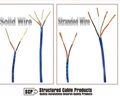 22 gauge 2 conductor bell wire Amazon.com:, ft 22 Gauge 2 Conductor Solid Security Alarm Wire Cable White: Everything Else 22 Gauge 2 Conductor Bell Wire New Amazon.Com:, Ft 22 Gauge 2 Conductor Solid Security Alarm Wire Cable White: Everything Else Ideas