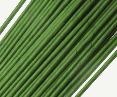 24 Gauge Green Floral Wire Perfect Homework2 Green Floral Stem Wire 18 Gauge Wire 12 Inch Pack Of 50 Solutions