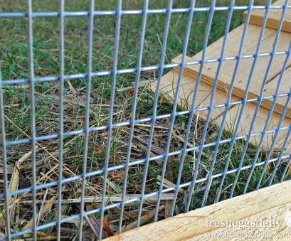 2x4 wire mesh fence Choosing, Right Fencing, your Chicken Coop,, or Garden, Fresh Eggs Daily® 2X4 Wire Mesh Fence Top Choosing, Right Fencing, Your Chicken Coop,, Or Garden, Fresh Eggs Daily® Ideas