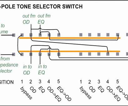 8 Nice 4 Position Toggle Switch Wiring Photos - Tone Tastic  Position Toggle Switch Wiring Diagram Pole on
