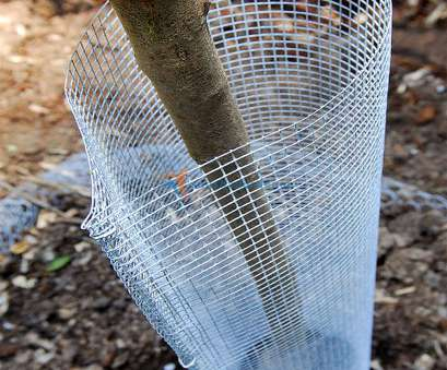 #4 woven wire mesh 19GA 3' Galvanized Metal Hardware Cloth Welded Wire Mesh Fencing, Cat Chicken 1 of 8FREE Shipping, More #4 Woven Wire Mesh Professional 19GA 3' Galvanized Metal Hardware Cloth Welded Wire Mesh Fencing, Cat Chicken 1 Of 8FREE Shipping, More Collections