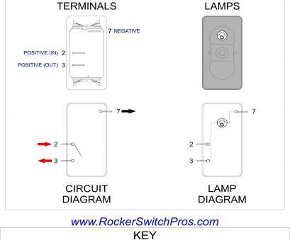 6 Pole Toggle Switch Wiring Diagram Most 6, Toggle Switch