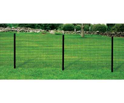 6 x 6 wire mesh fence FORGERIGHT Deco Grid 4, x 6, Black Steel Fence Panel, Home 6, Wire Mesh Fence Best FORGERIGHT Deco Grid 4, X 6, Black Steel Fence Panel, Home Images