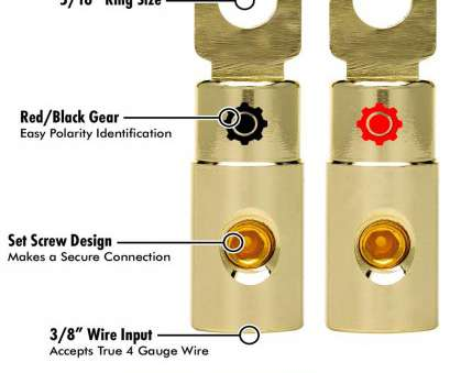 8 gauge wire vs 4 gauge Amazon.com: InstallGear 4, Gauge Gold Ring, Screw Battery Ring Terminals (4 Pack): Electronics 8 Gauge Wire Vs 4 Gauge Popular Amazon.Com: InstallGear 4, Gauge Gold Ring, Screw Battery Ring Terminals (4 Pack): Electronics Photos